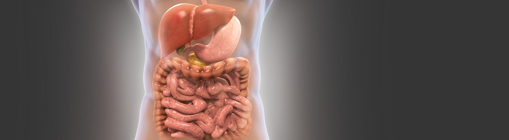 Ayurvedic treatment for Gastrointestinal system- concept of agni Causes