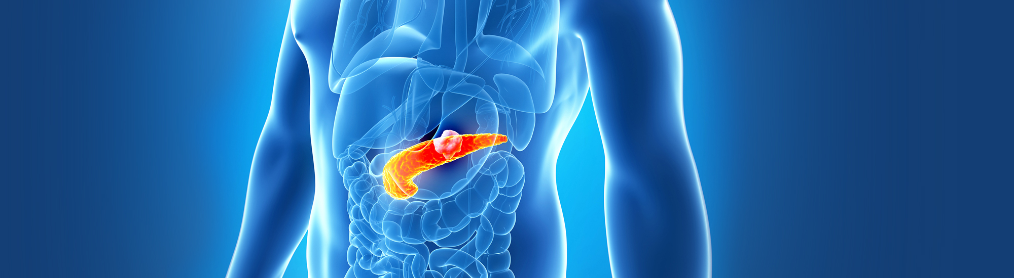 Ayurvedic treatment for Pancreatitis Diagnosis