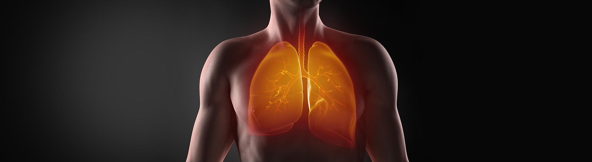 Ayurvedic treatment for Pneumonitis
